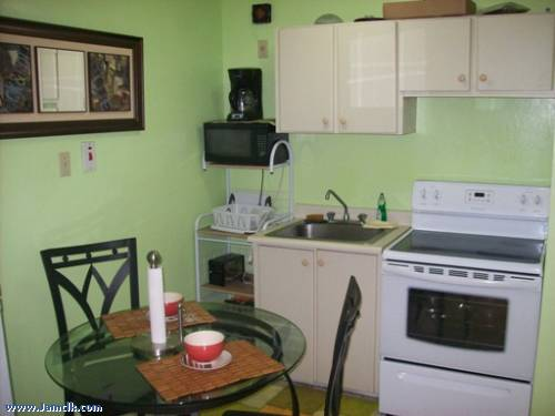 One Bedroom Apartment For Short Term Rental In New Kingston