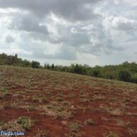 8.004903 Acres Agricultural / Residential Lot in Short Hill, Treasure Beach